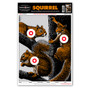 """Life Size Squirrel 12.5""""x19"""" Hunting Shooting Paper Targets"""
