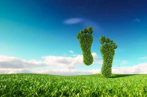 How to Reduce Your Carbon Footprint: 4 Simple Methods Everyone Can Use