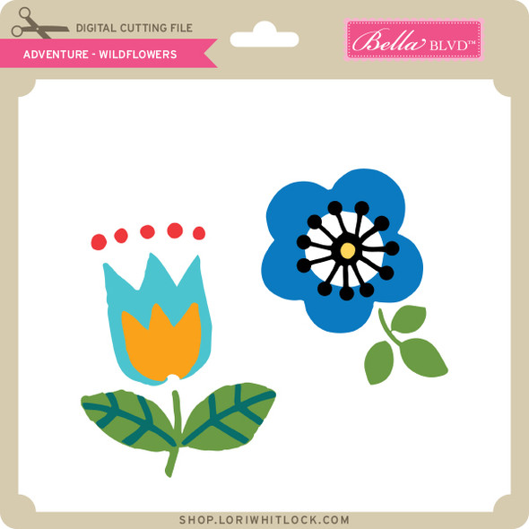 Adventure - Wildflowers