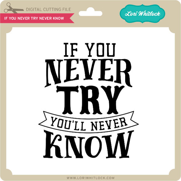 If You Never Try Never Know