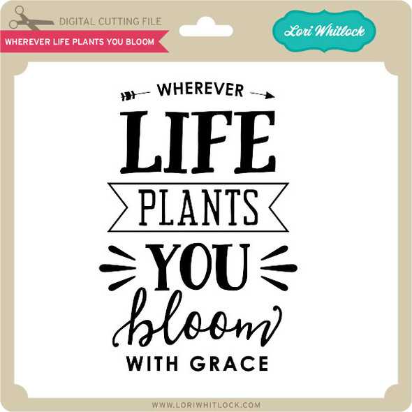 Wherever Life Plants You Bloom