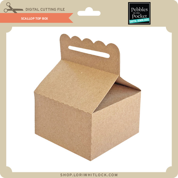 Scallop Top Box