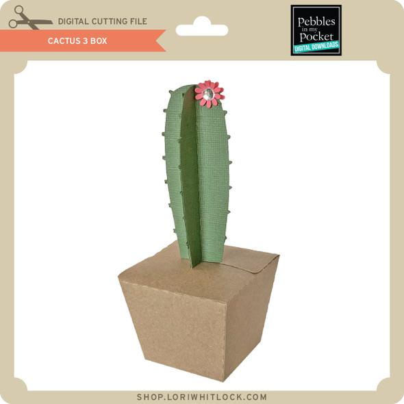 Cactus 3 Box