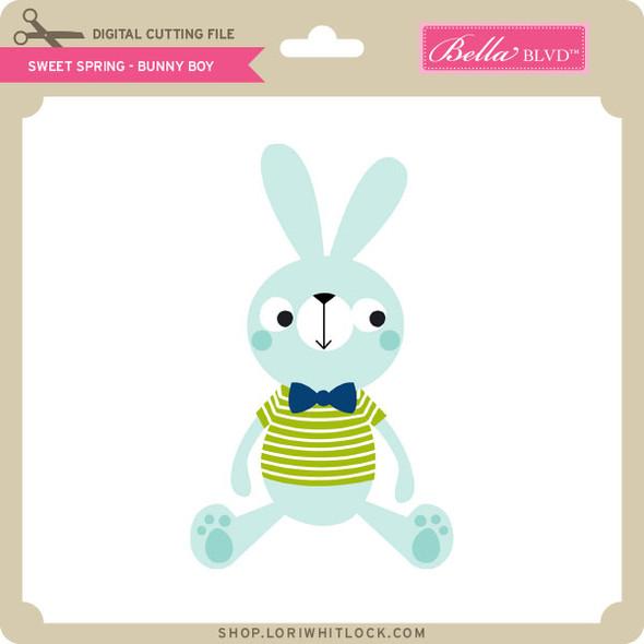 Sweet Spring - Bunny Boy