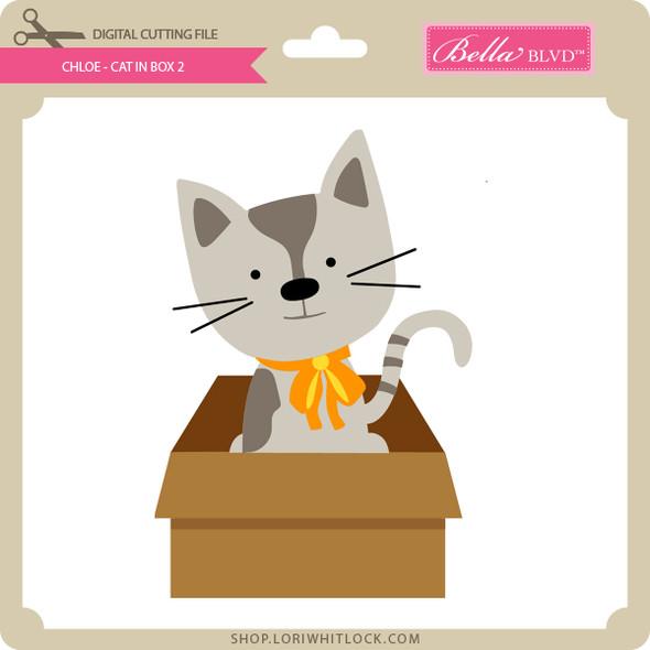 Chloe - Cat in Box 2