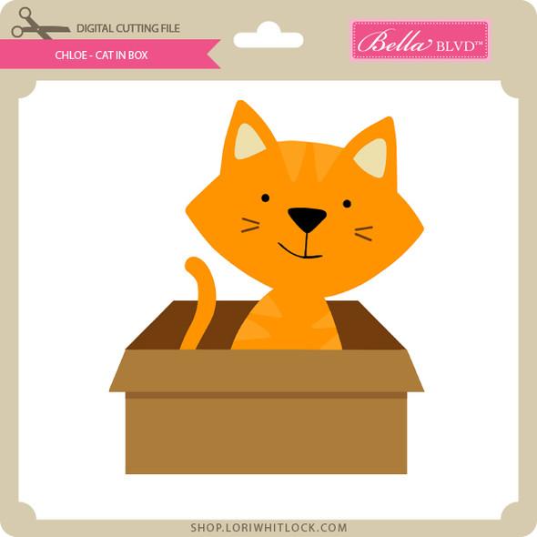 Chloe - Cat in Box