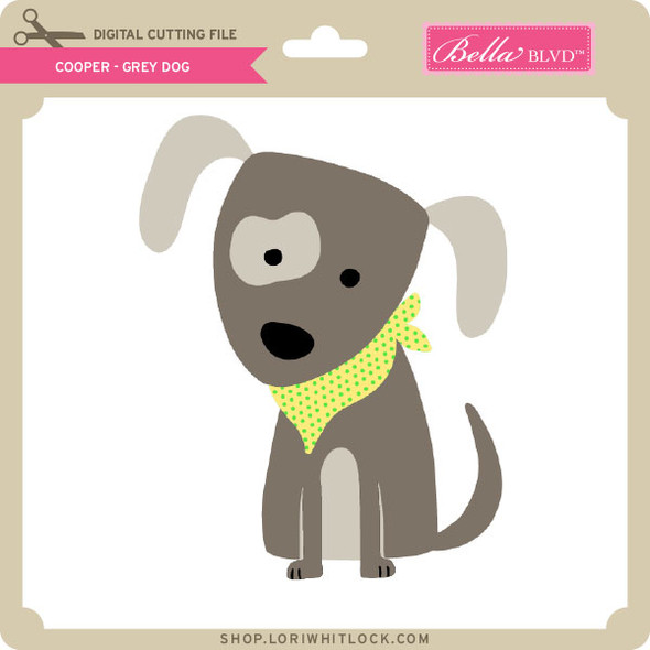 Cooper Grey Dog