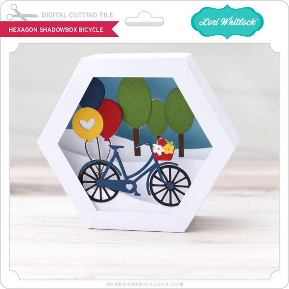 Hexagon Shadowbox Bicycle