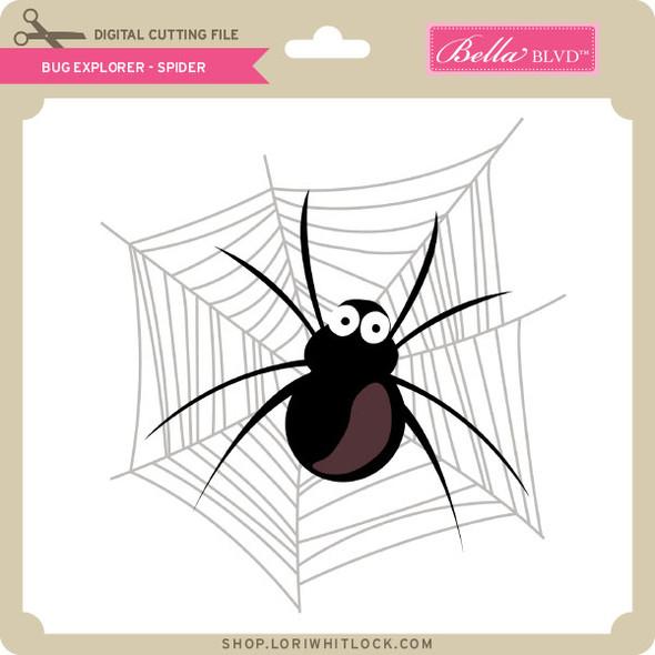 Bug Explorer - Spider