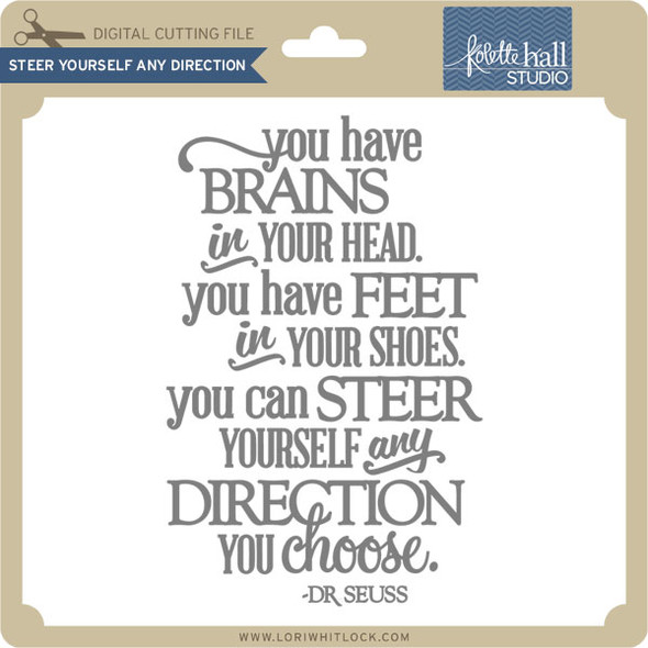Steer Yourself Any Direction