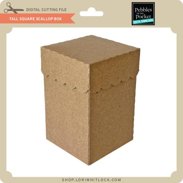 Tall Square Scallop Box