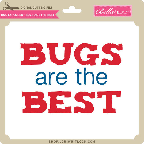 Bug Explorer 2 - Bugs Are The Best