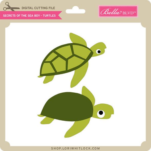 Secrets of the Sea Boy - Turtles