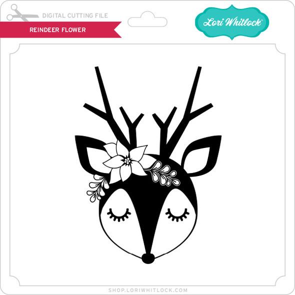 Reindeer Flower