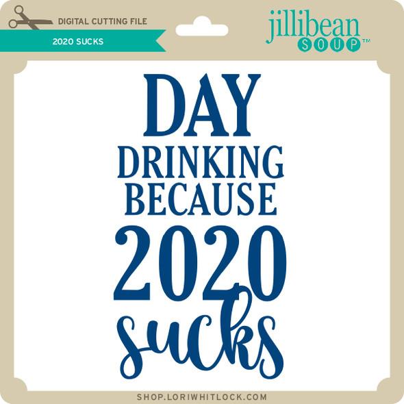 2020 Sucks