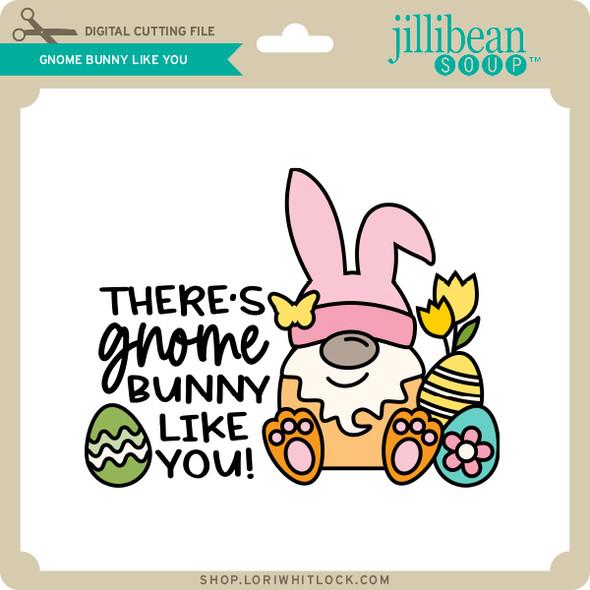 Gnome Bunny Like You