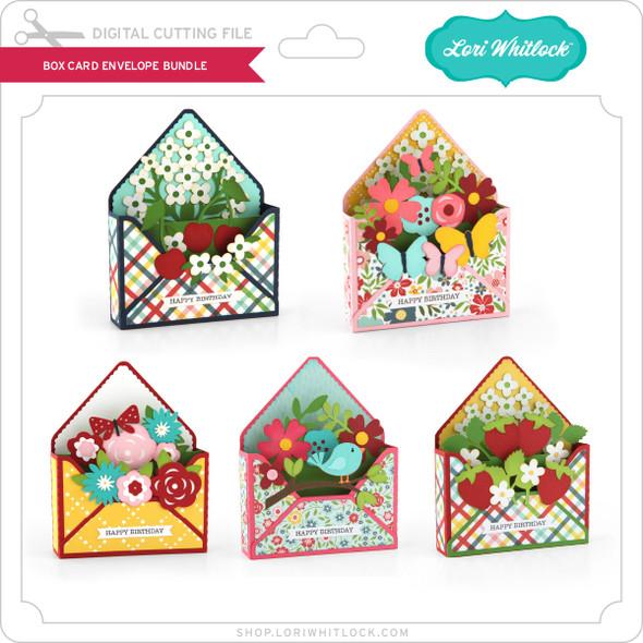 Box Card Envelope Bundle