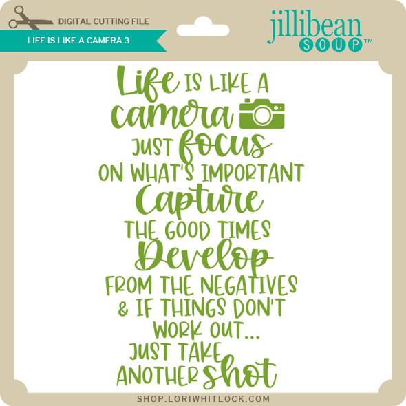 Life is Like a Camera 3
