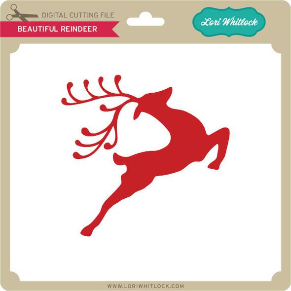 Beautiful Reindeer
