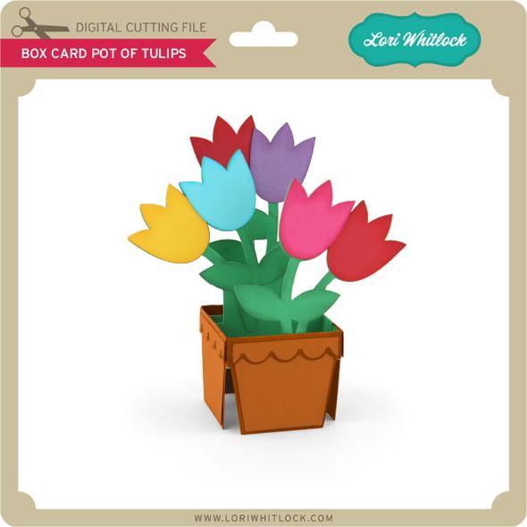 Box Card Pot of Tulips