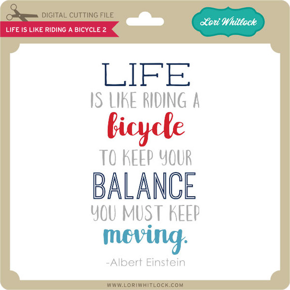 Life is Like Riding a Bicycle 2
