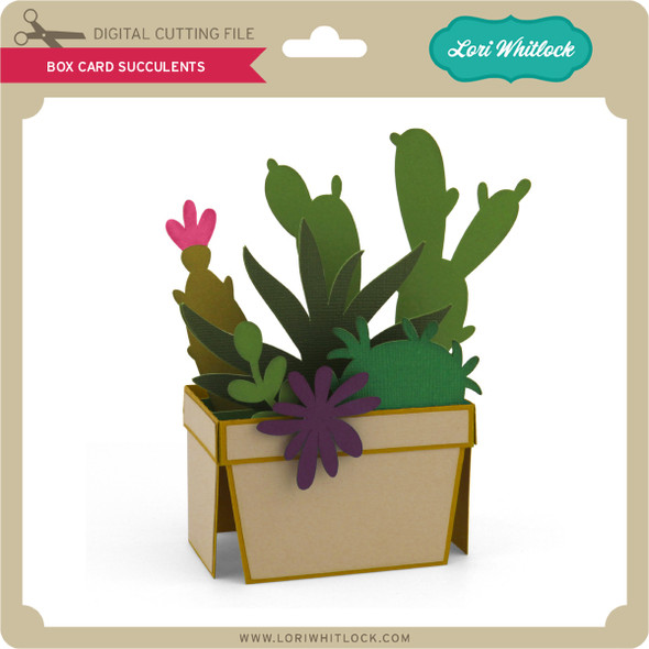 Box Card Succulents
