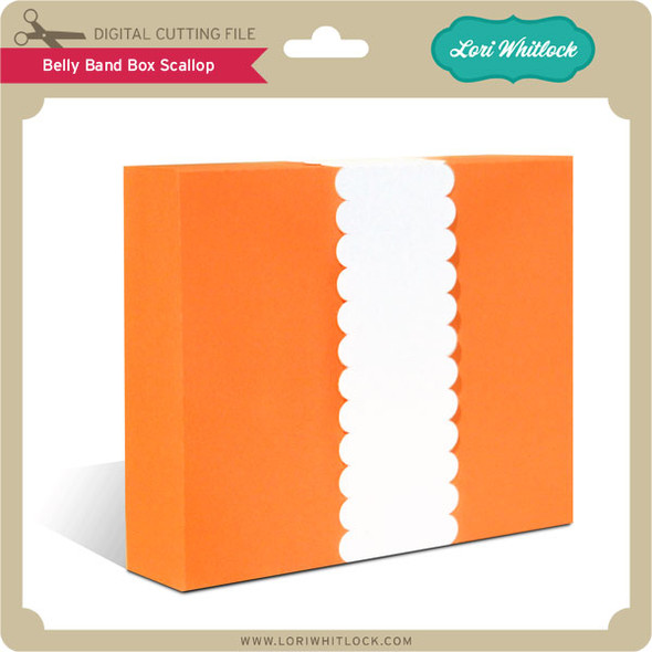 Belly Band Box Scallop