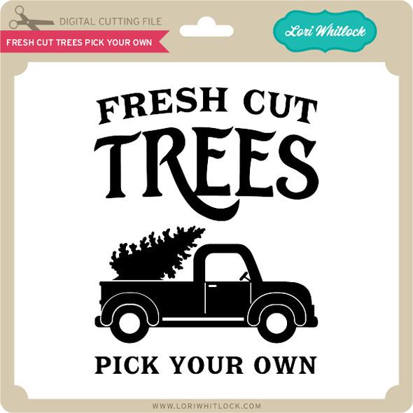 Fresh Cut Trees Cut Your Own