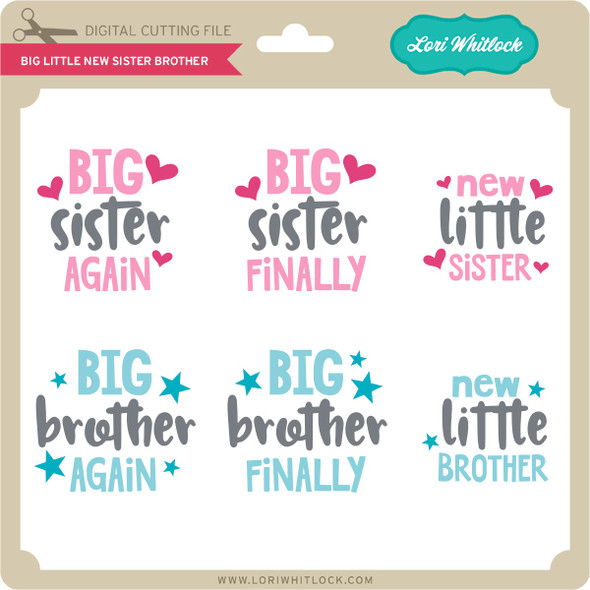 Big Little New Sister Brother