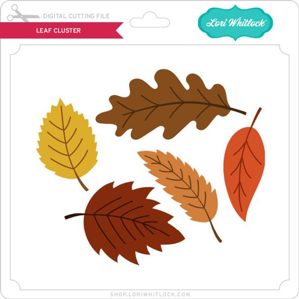 Leaf Cluster