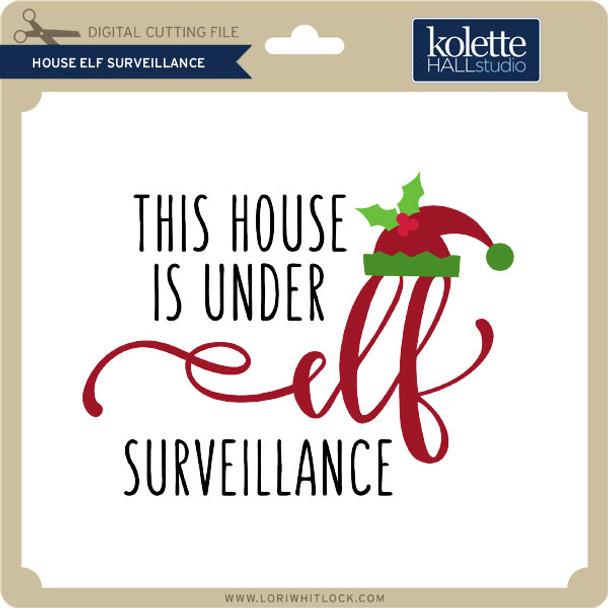 House Elf Surveillance