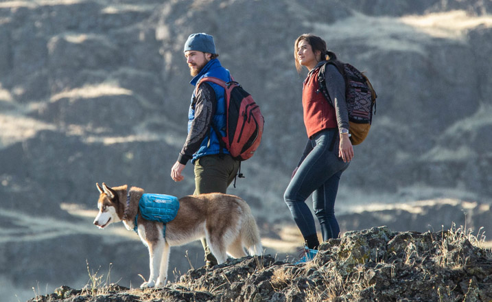 Two hikers on a mountain top with their dog