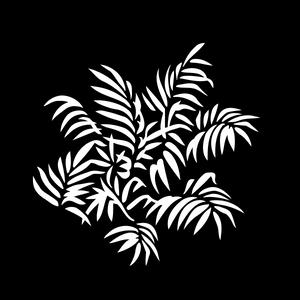 Foliage Ferns