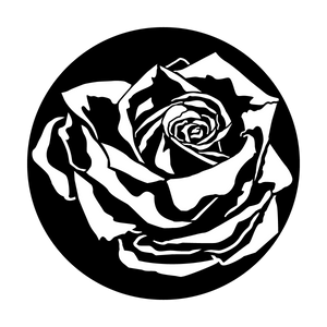 Rose with Shadow