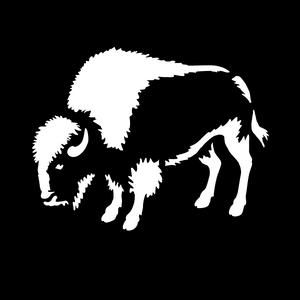 West Buffalo