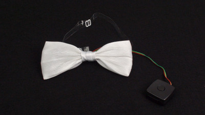Fiber Optic Bowtie
