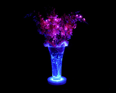 6″ diam Light Base