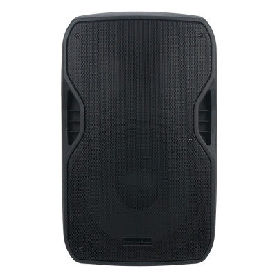 "ELS GO 15BT Active Lightweight 15"" Speaker with Bluetooth, USB/SD playback"