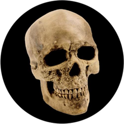 Yorick Skull