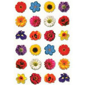 Flowers Stickers