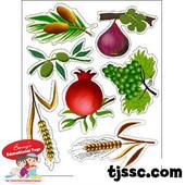 Seven Species of Israel Card Stock