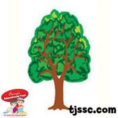 Small Tree Card Stock