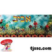 Aviv Medium Capsulated Poster