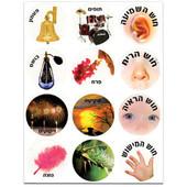 The 5 Senses in Hebrew Stickers