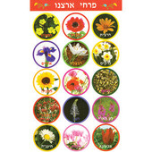 Flowers of Israel Stickers