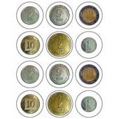 "Israeli Shekel (NIS) (ש""ח) Coins Stickers"
