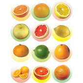Large Citrus Fruit Stickers
