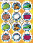 Passover Seder Plate Symbols Stickers
