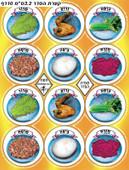 Passover Seder Plate Symbols Stickers