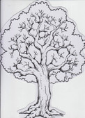 Shkedia Tree with Stickers art and craft